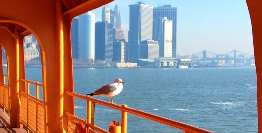 ニューヨークの海辺